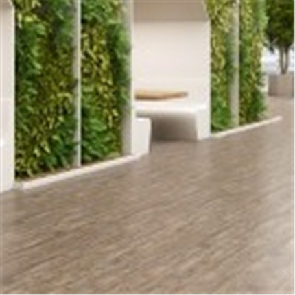 Expona Commercial Wood Collection
