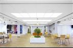 Ecophon Soundlight Comfort Ceiling