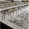 Dala Cement Plattbärlag