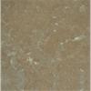 Borghamnskalksten, gråbrun