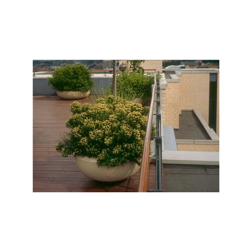 pro urba planteringk rl vestre ab. Black Bedroom Furniture Sets. Home Design Ideas