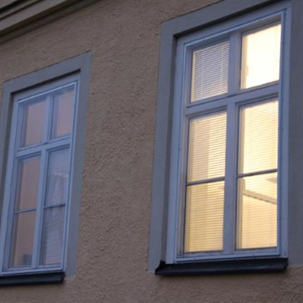 Fönsterrutor