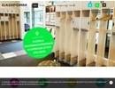 Cadiform kapphyllor på webbplats