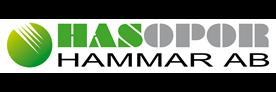 Hasopor logo