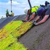 Läggning av Seduna sedumtak SRS 3-30° på tak