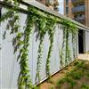 Seduna SGW växtvajer på fasad