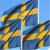Flaggor och flaggprodukter