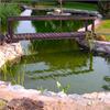 Greenseal gummiduk för trädgårdsdamm