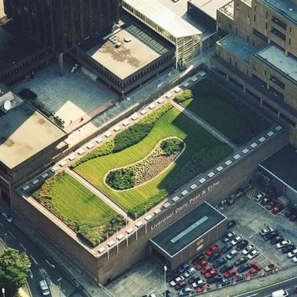 Prelasti taksystem, Green roof, Liverpool-UK