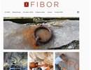 FIBOR - Företag inom byggnadsvård