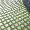 Våxtorps Eco-sten, gräsarmering
