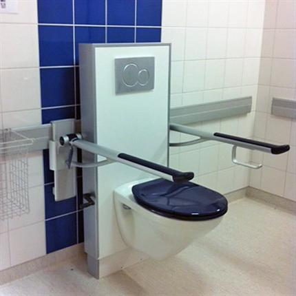Care PLUS toalettarmstöd, blå