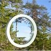 Förädling i Norrbotten fönster trä
