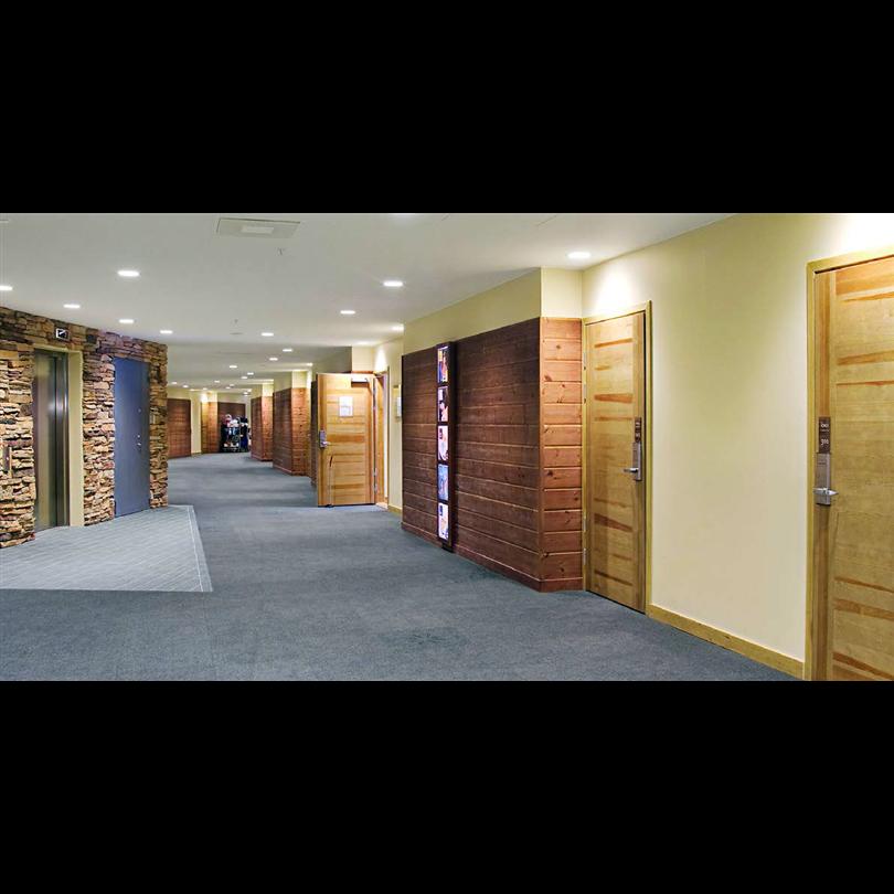 SSC innerdörrar av trä