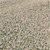Betongindustri Cementbundet grus CG