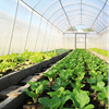 Clariant Växthusfilm