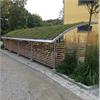 Cykelgarage med sedumtak för skandinaviskt klimat, vindsäkrad uppbyggnad