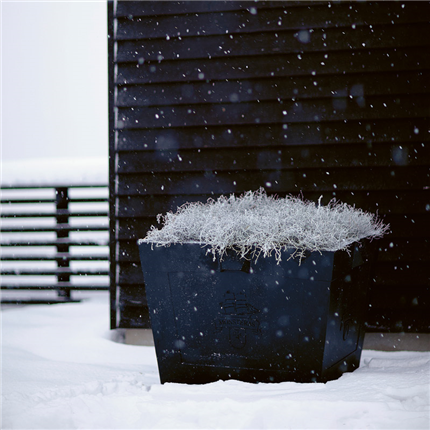 Byarum Karl XL Växtkärl, på snö miljö