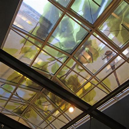 Clarex Fönsterdekor, fönsterfilm, insynsskydd