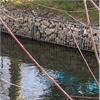 Gabioner Erosionsskydd