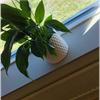 Wallsystems Fönsterbänkar