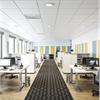 Ecophon Focus på kontor