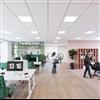 Ecophon Lighting™ undertaksbelysning i kontorsmiljö