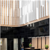 Ecophon Solo Baffle Wall