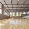 Ecophon Super G™ akustiktak i baskethall