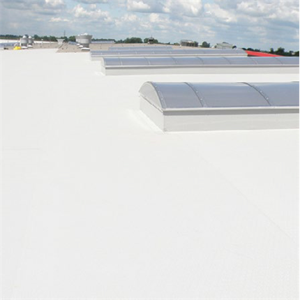 Protan SE Cool Roof takduk