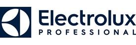 Electrolux Professional AB (publ)