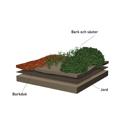 Terra Home barkduk