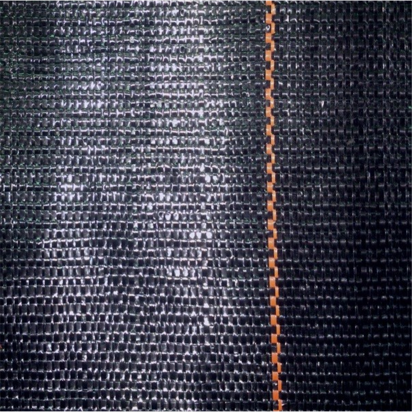 Thrace WG21 woven geotextil