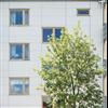 Cembrit Transparent fasadskivor, Miraallén, Sannegårdshamnen, Göteborg