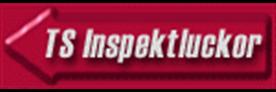 ts-inspektluckor-ftglogga-w
