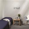 Huntonit Basic Wall innervägg - Microfog väggpanel, Frost