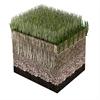 Powergrass Hybridgräs