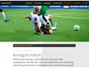 Konstgräs Fotboll på webbplats