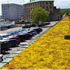 BGreen-it Sedumtak gröna tak vid parkering