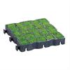Ecoraster gräsarmering med gräsfyllning