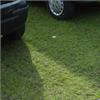 Ecoraster gräsarmering