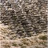 Fortrac 3D erosionsmatta