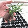 Urban Biotoper plugg med en planta