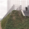 Vector Wall® Grön, gröna väggar - gabioner med gröna växter, Hotel Hilton, Köpenhamn