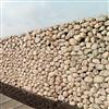 Vector Wall® gabioner/stödmurssystem