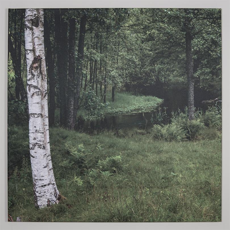 Ramex Ljudabsorbent, canvas, Björkskog