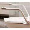 Etac Supporter toalettarmstöd