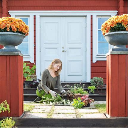 Leksandsdörren pardörrar Tradition, Rönnäs