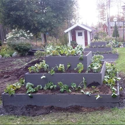 Träkomposittrall, plantering