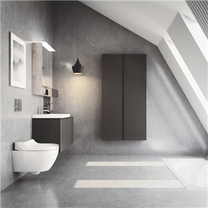 AquaClean är en duschtoalett utrustad med en inbyggd duscharm som sköljer rent och en varmluftstork för skonsam torkning. Geberit lanserade duschtoaletten för den svenska marknaden på Stockholm Furniture & Light Fair den 6 februari.